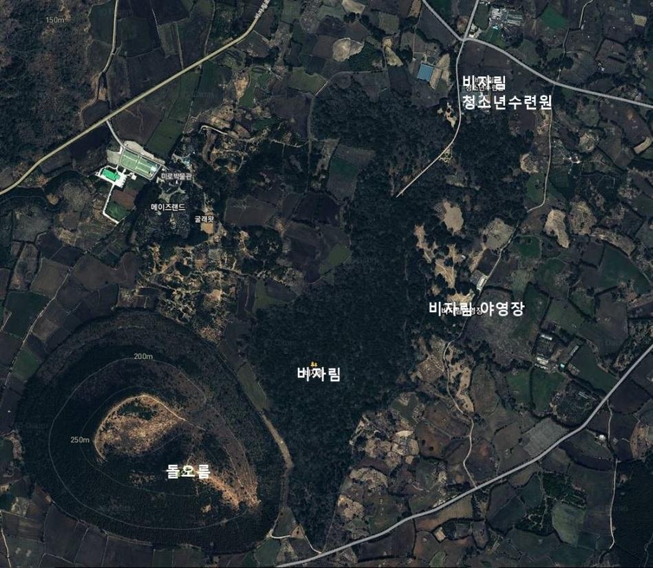 비자림_map.jpg