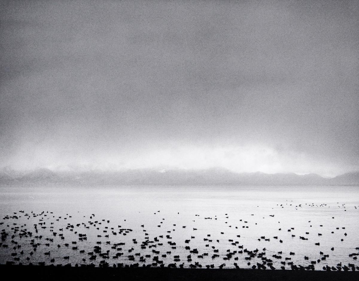 펜티 사말라티(Pentti Sammallahti)   Lake Inawashiro, Japan 2005.jpg