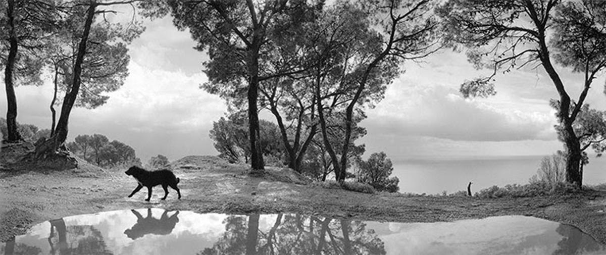 Pentti-Sammallahti-Here-Far-Away-Cilento-Italy-1999.jpg