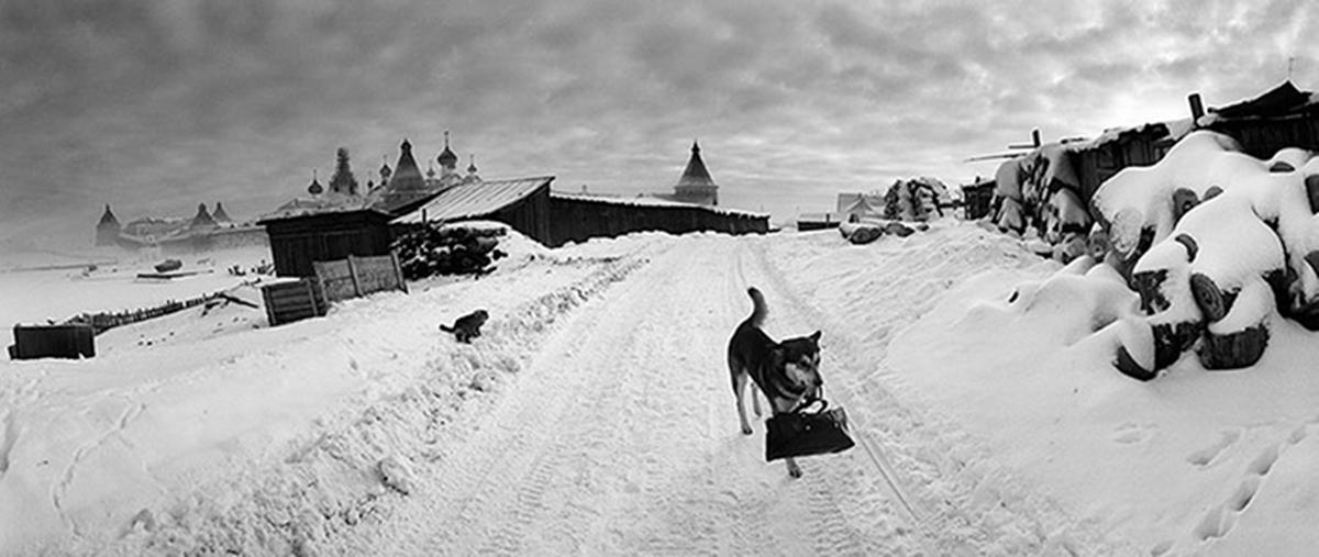 Solovki, White Sea, Russia (Dog with Bag), 1992 Solovki-White-Sea-by-Pent-005.jpg