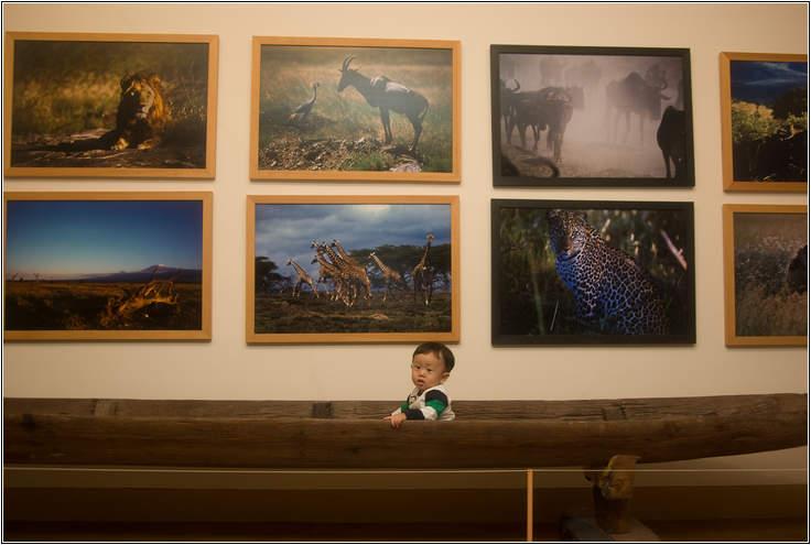 제주여행-아프리카박물관-1317.jpg