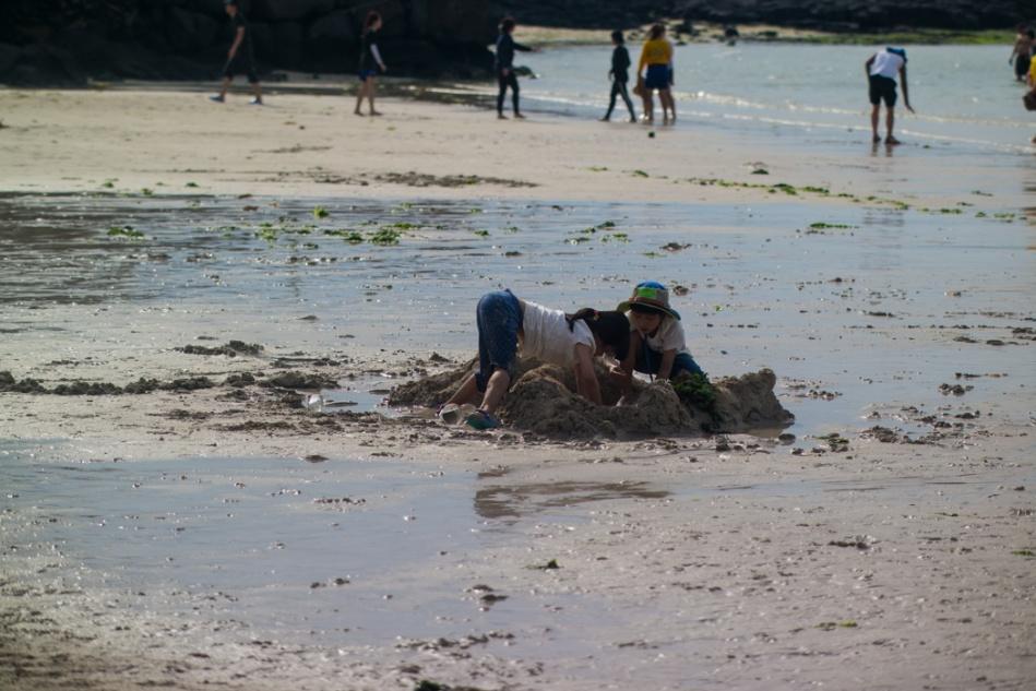 제주여행 함덕해수욕장(150521)-6309.jpg