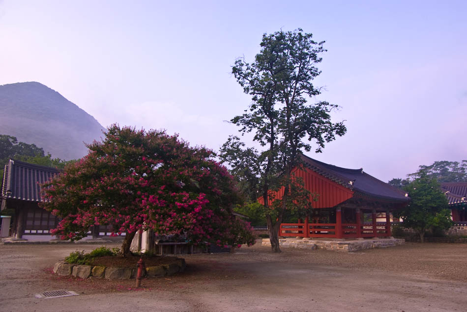 선운사-5066.jpg