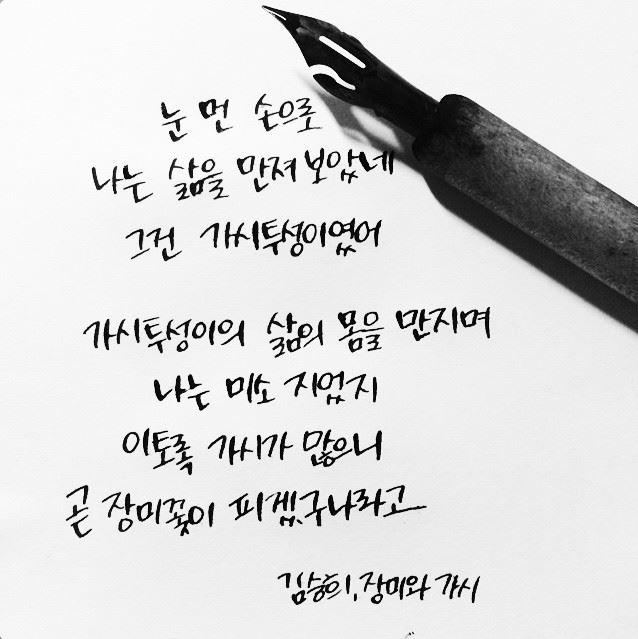 김승희 장미와가시.jpg