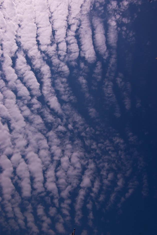 구름 좋은 날-1761.jpg