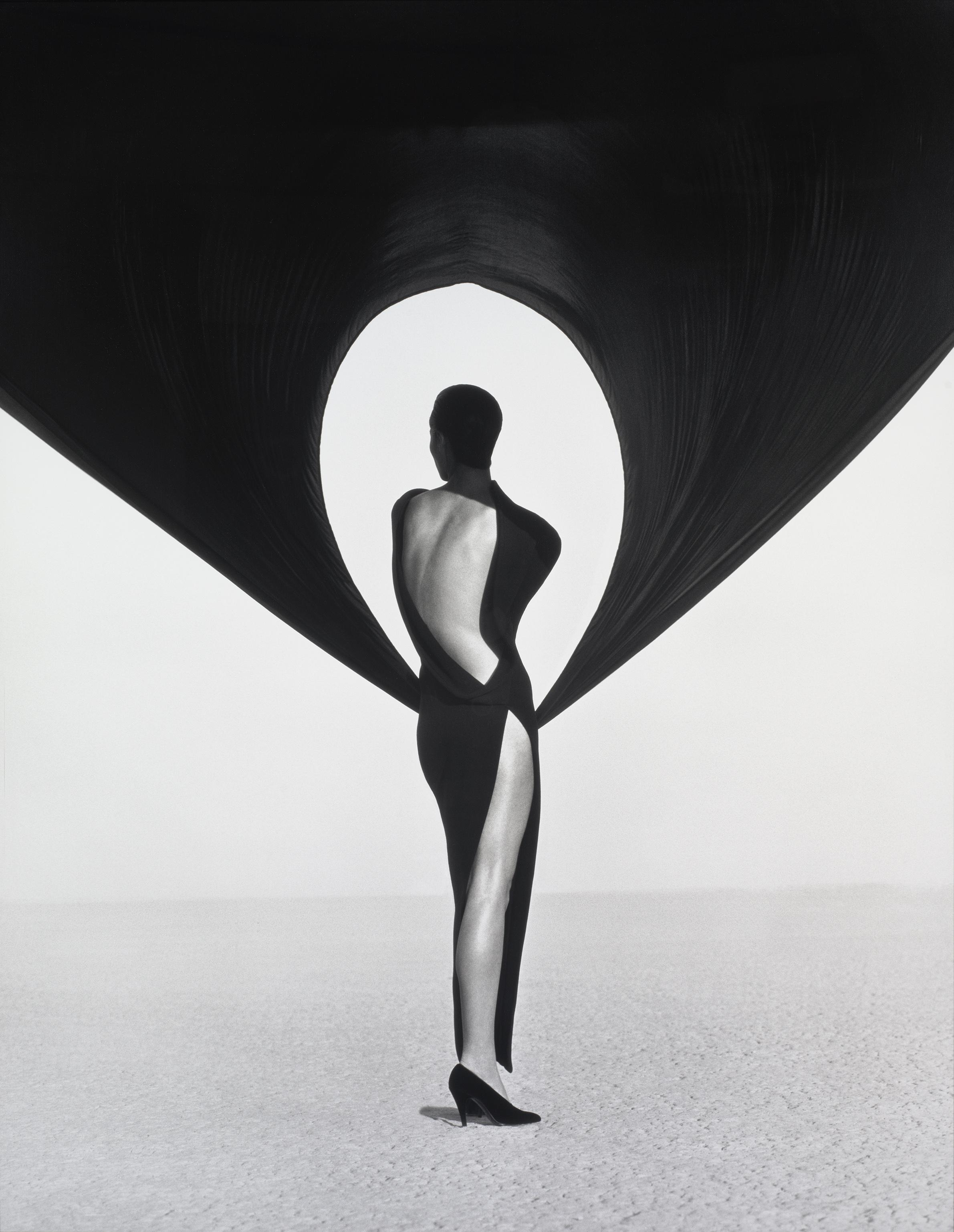 1-versace-dress-back-view-el-mirage-1990.jpg