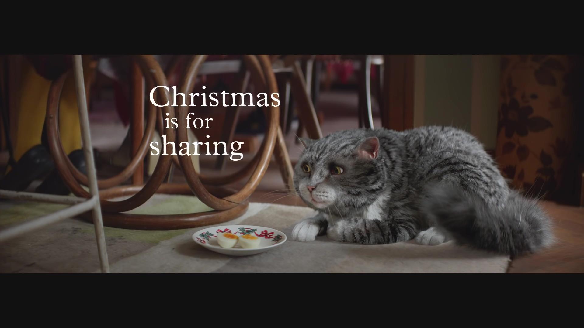 Sainsbury's Christmas Advert 2015 – Mog's Christmas Calamity(1080p).mp4_20151217_001452.296.jpg