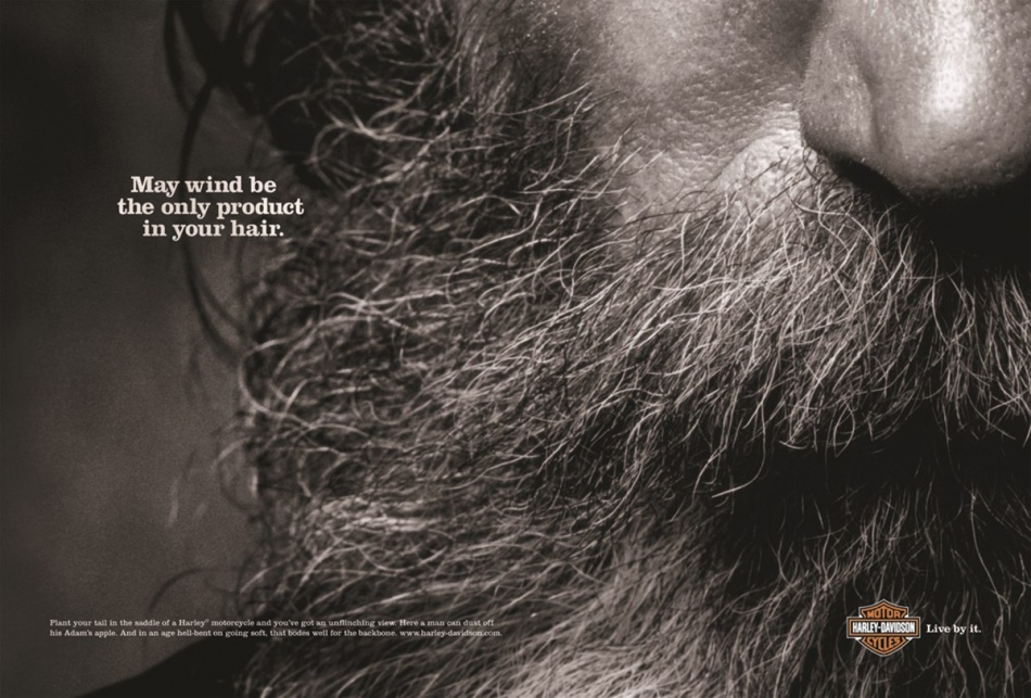 Harley Davidson - harley_beard May wind be the only product in your hair.jpg