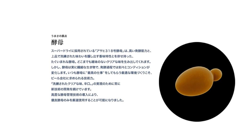 SuperDry 설명02.jpg