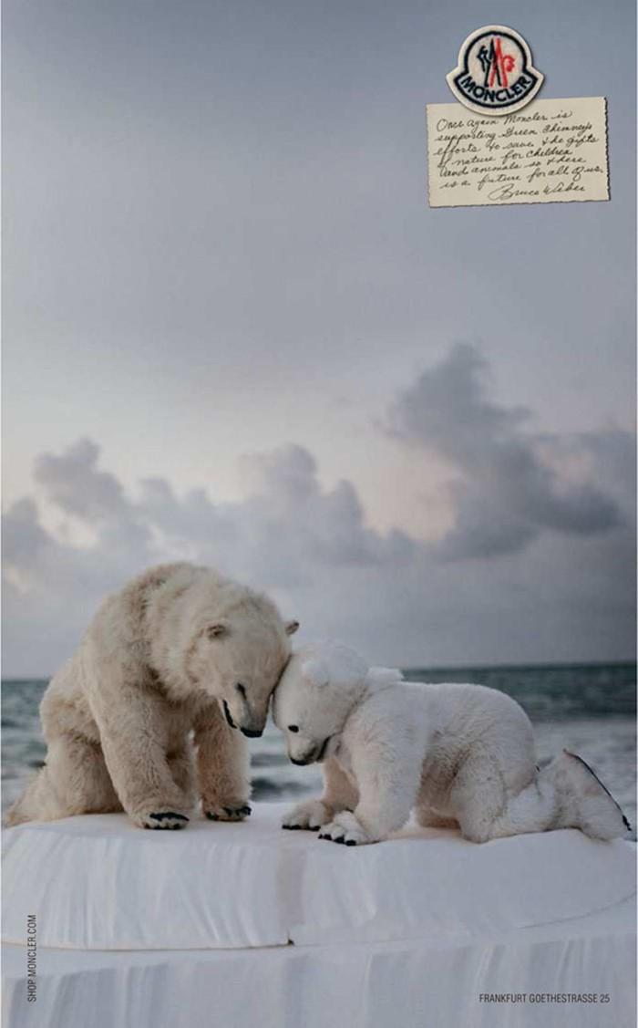 몽클레르(Moncler) 광고_Polar Bears 2012.jpg