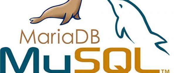 우분투 20.04에서 MariaDB 업그레이드 방법(10.4 → 10.5) 1