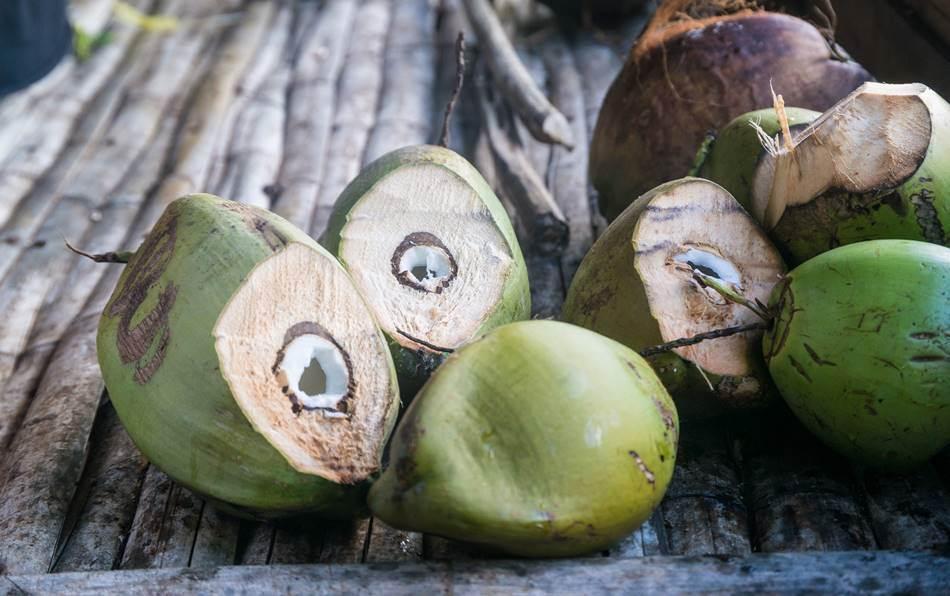 코코넛 공예를 위해서 가져다 놓은 파인애플