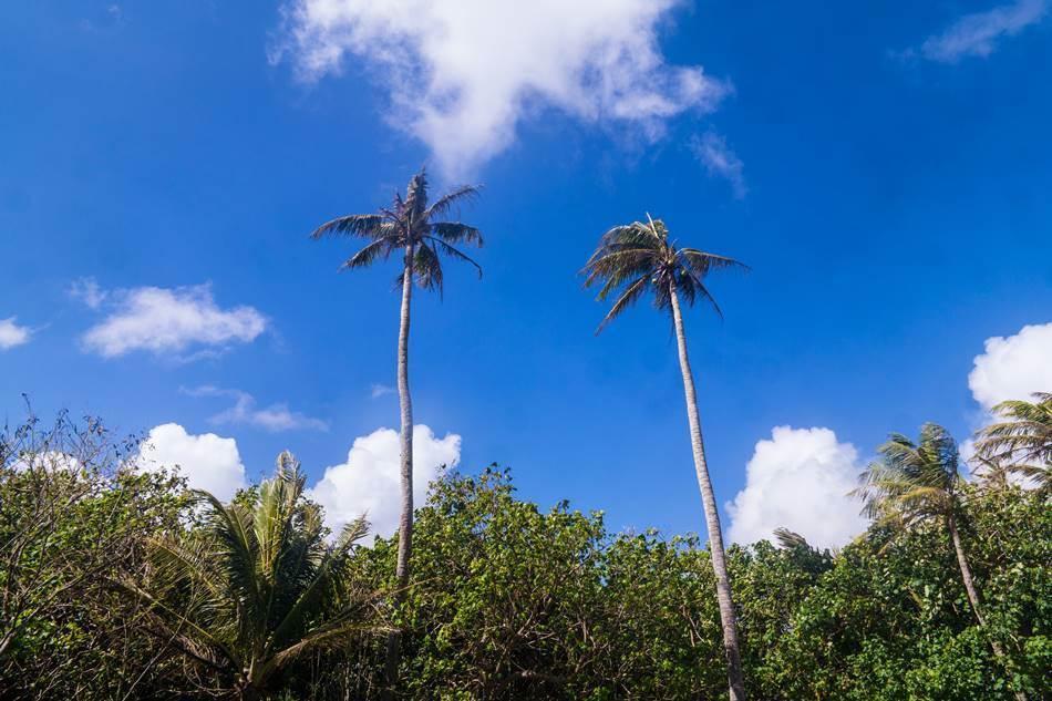 얼렁뚱땅 다녀온 괌(GUAM) 여행기 – 괌의 아름다움과 전통 문화가 가득한 정글 리버 쿠르즈(Riverboat Cruise) 42