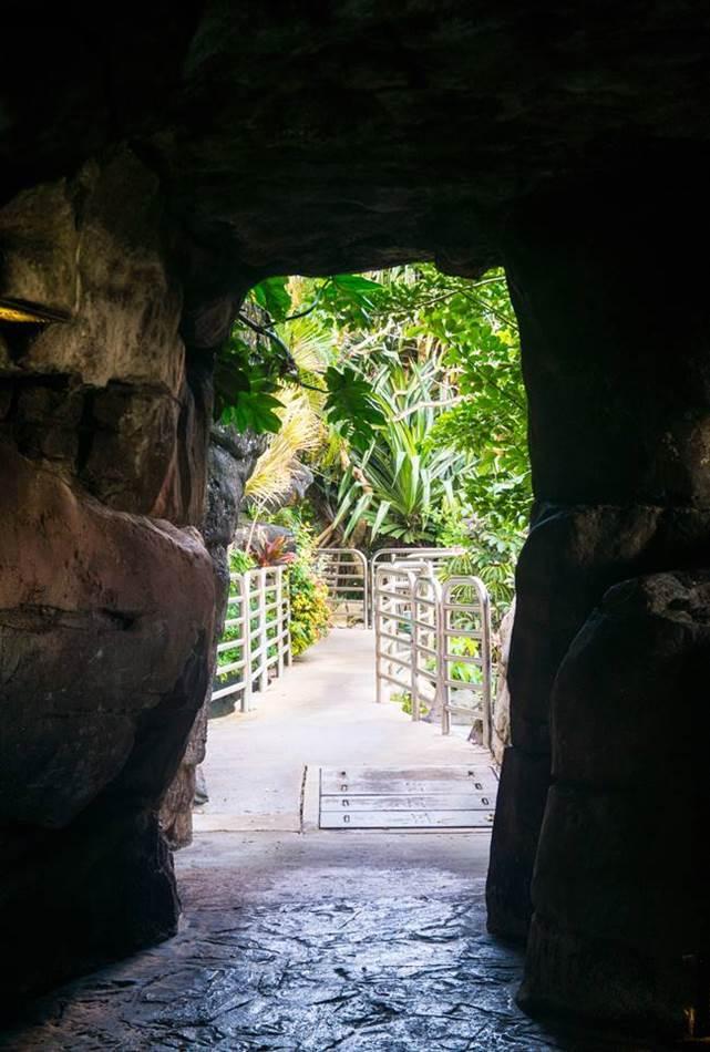PIC 디너쇼 가는길에 만나는 동굴