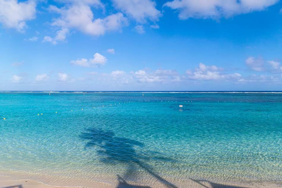괌여행_PIC 풍경_야자수 그늘의 바다-4681