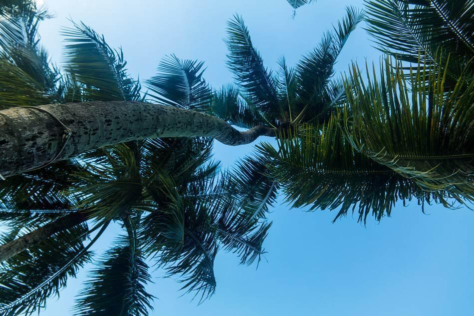 얼렁뚱땅 다녀온 괌(GUAM) 여행기 – PIC GUAM의 아름다운 풍광 7가지 19
