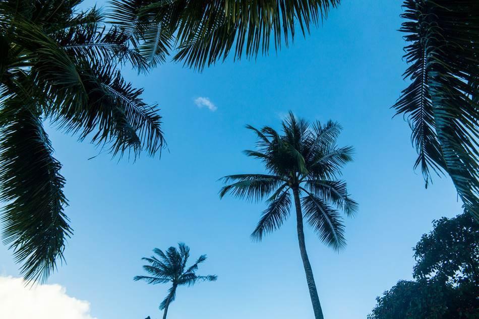 얼렁뚱땅 다녀온 괌(GUAM) 여행기 – PIC GUAM의 아름다운 풍광 7가지 20
