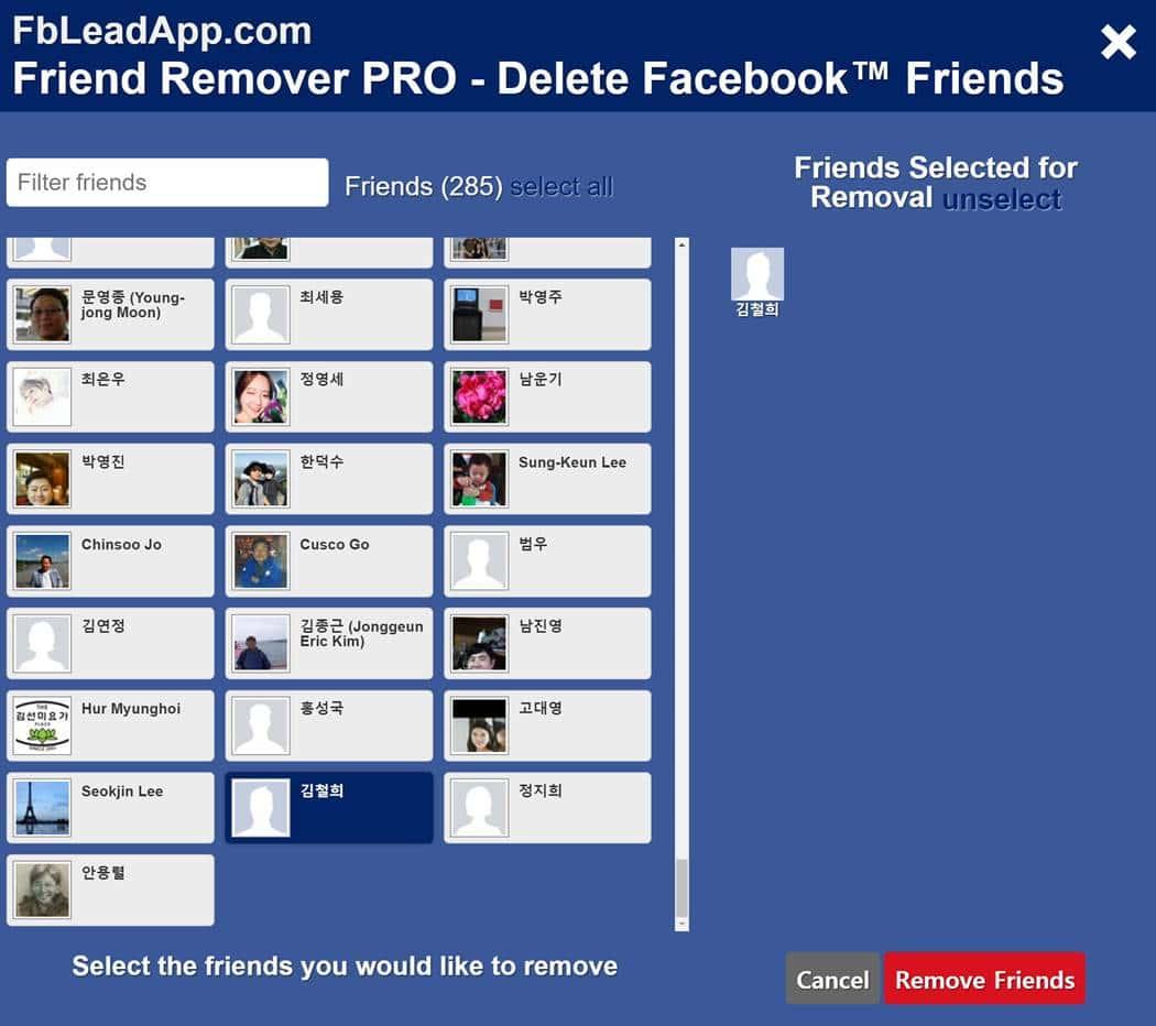 페이스북 친구 일괄 삭제 프로그램 - Facebook Friend Remover PRO 2016 실행 모습