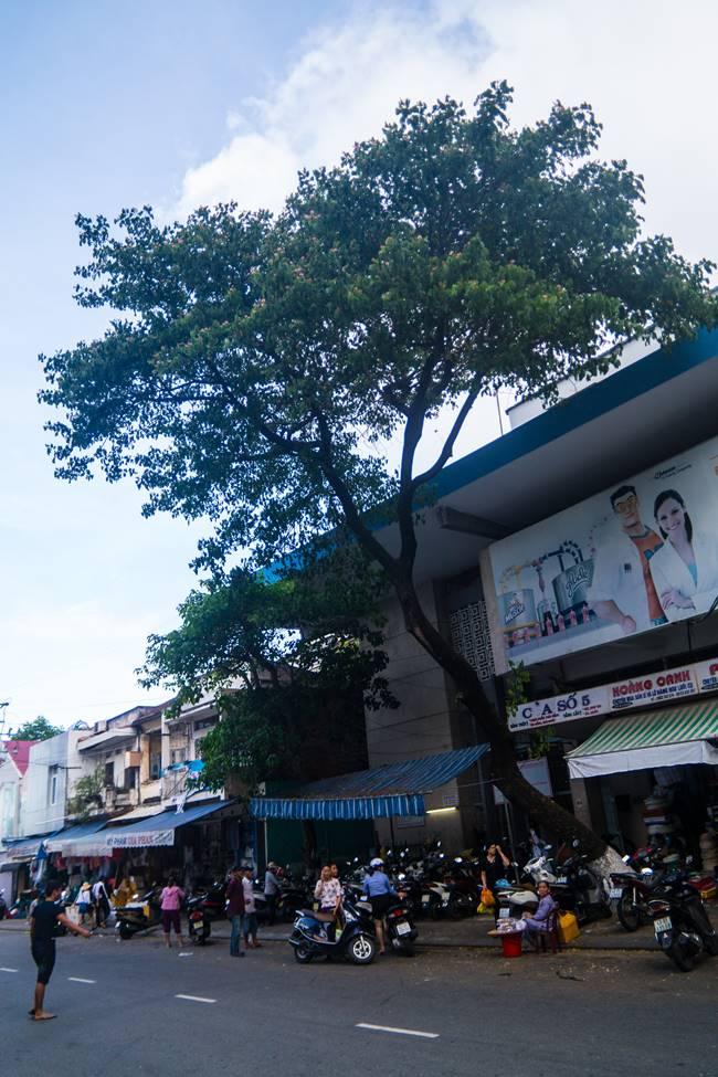 베트남 다낭 여행 - 다낭 한마켓 근처-3746