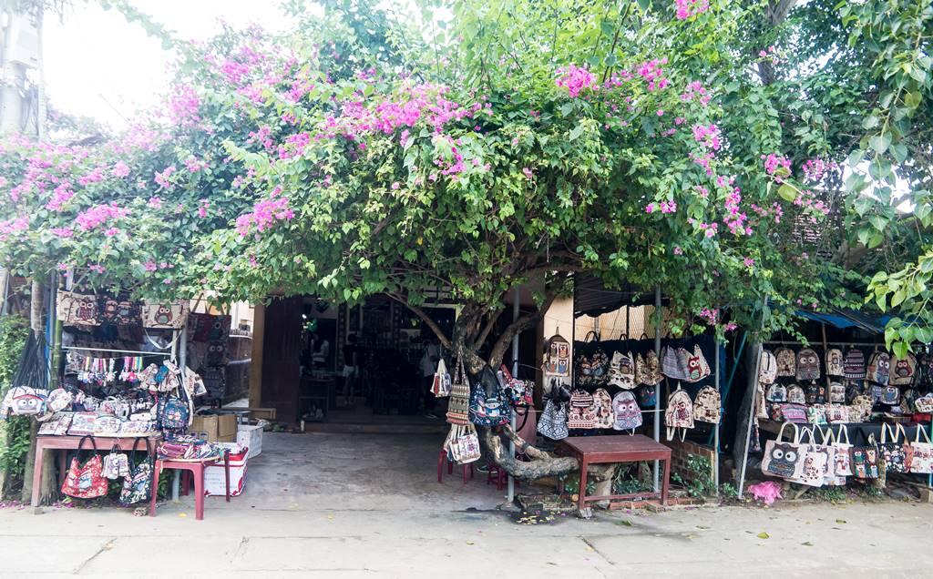 베트남 다낭 여행기 #17 –  베트남 다낭과 호이안에서 만난 아름다운 꽃들 9