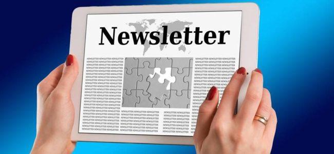 [이메일마케팅] 워드프레스에서 뉴스레터 가입폼 적용 두가지 방법
