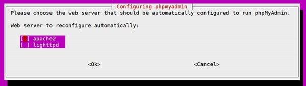 phpMyAdmin 설치 시 나타나는 2번째 메세지 웹서버 선택