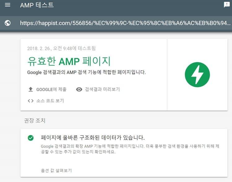 AMP 테스트 결과 _ 유효한 AMP 페이지