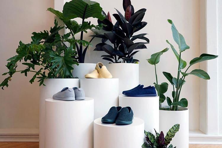 식물들로 가득차 있는 올버즈의 샌프란시스크 매장 올버즈의 친화견 메세지를 전달 Allbirds San Francisco store