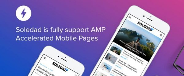 [워드프레스 Tips] AMP 플러그인 AMP for WP – Accelerated Mobile Pages 문제점 1