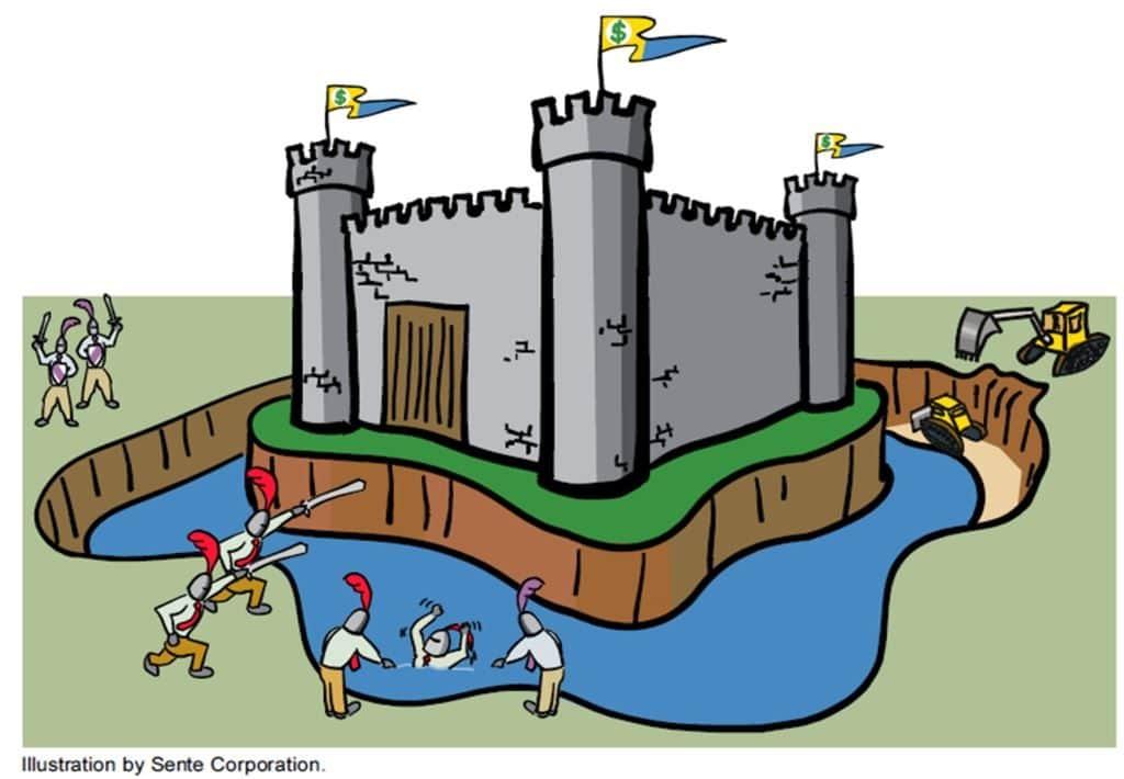 경제적 해자 Economic Moat