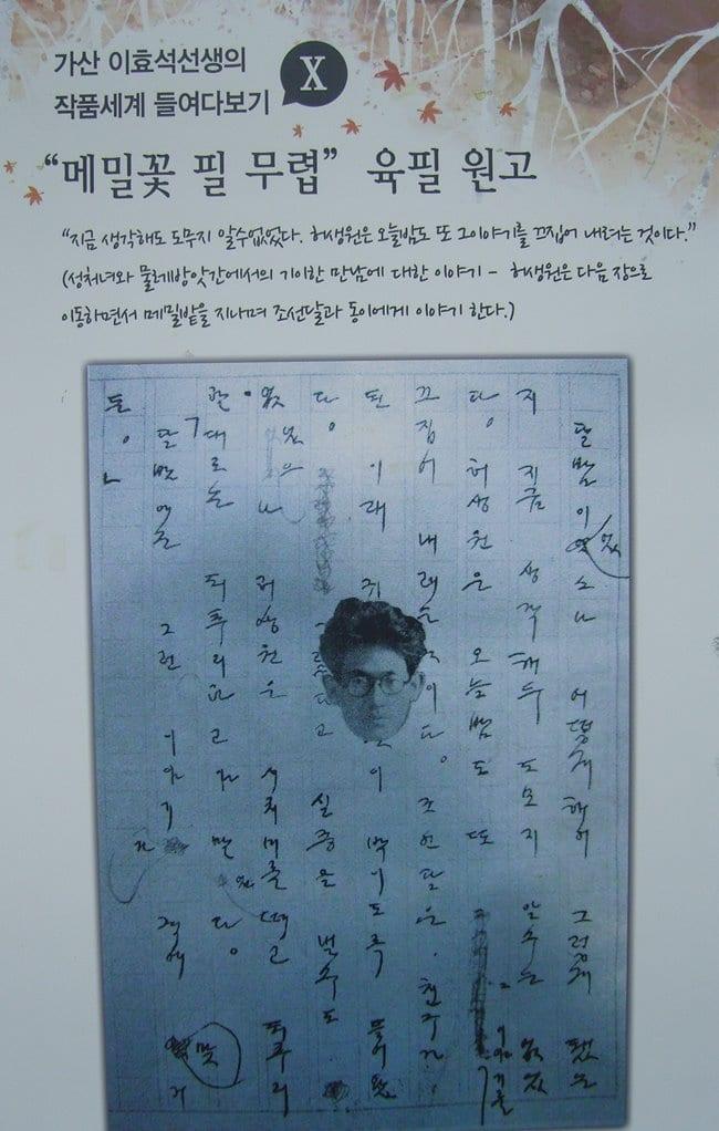 이효석문학관_메밀꽃 필무렵 육필 원고