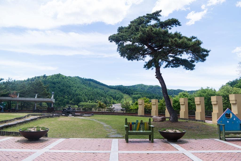 이효석문학관_문학관 앞 풍경, 이효석좌상과소나무 그리고 벤치-6131