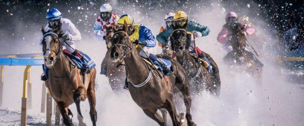 눈밭에서 펼쳐지는 말경주 Horse race in Sankt Moritz called White Turf. It take place every year on the iced, Image - pietro mattia