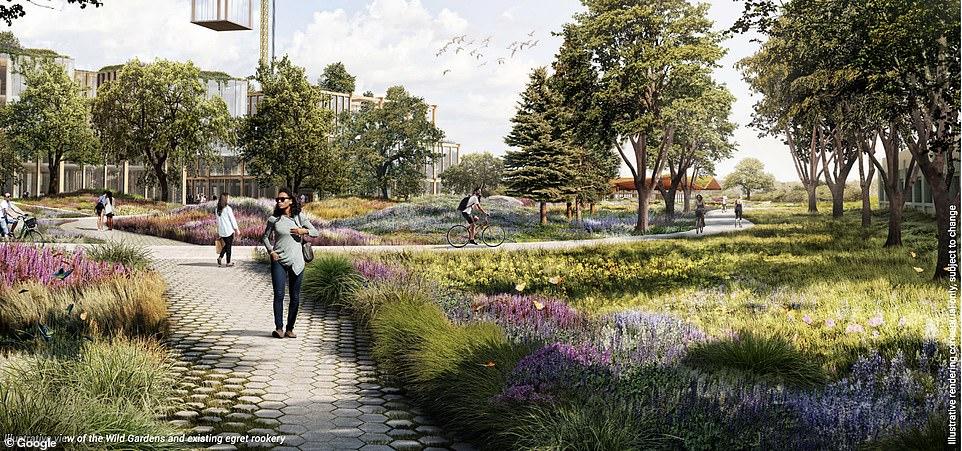 구글의 새로운 캠퍼스 조감도_캠퍼스의 30%는 녹지 지구로 설계해 여유와 평온을 느낄 수 있도록 설계