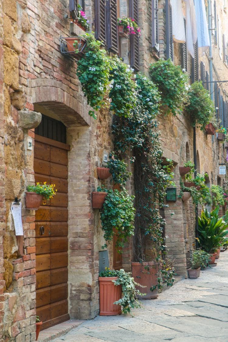 이탈리아 자동차 여행, 피엔차 골목 풍경을 클로즈업해 보다, 아직도 푸릇 푸릇한 식물 넝쿨들이 널려 있다, Image - Choi dongsoon
