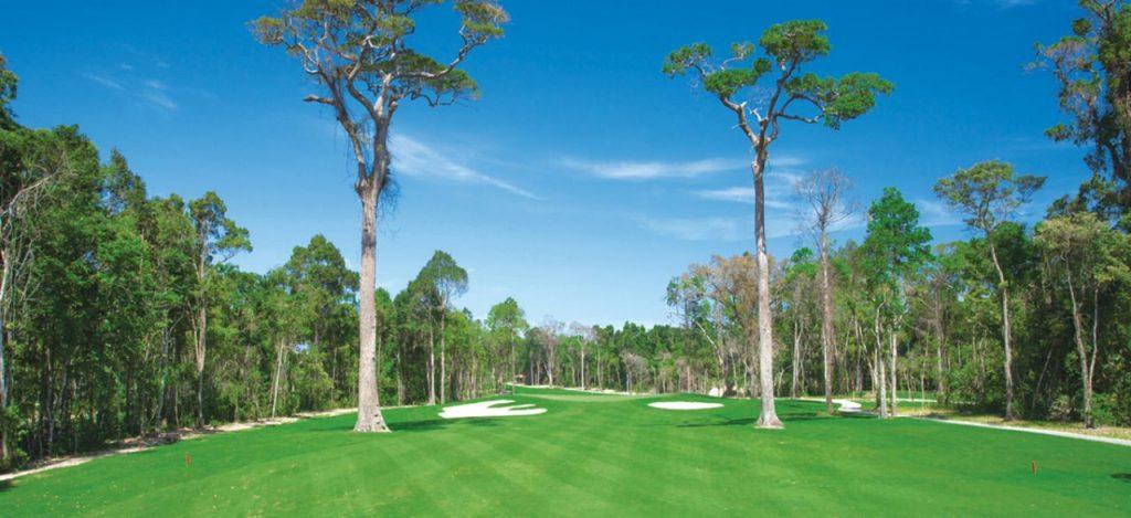 푸꾸옥 빈펄 골프장(Vinpearl Golf Phu Quoc) 아름들이 나무가 있는 코스 풍경