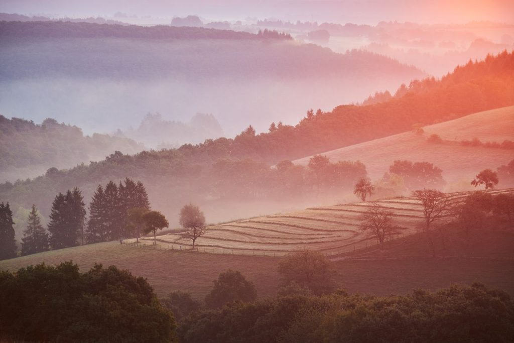룩셈부르크 포도밭, Vianden, Luxembourg, Photo by marc-marchal