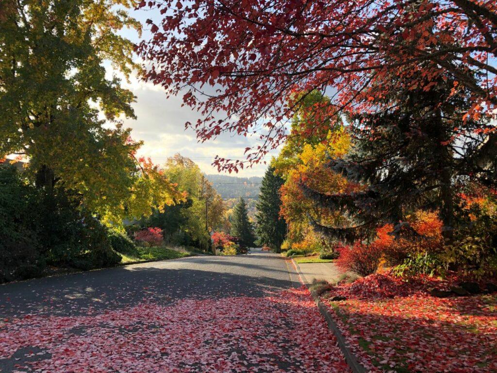 미국 오리건주 유진, Eugene, OR, USA, Photo by miguel-flores