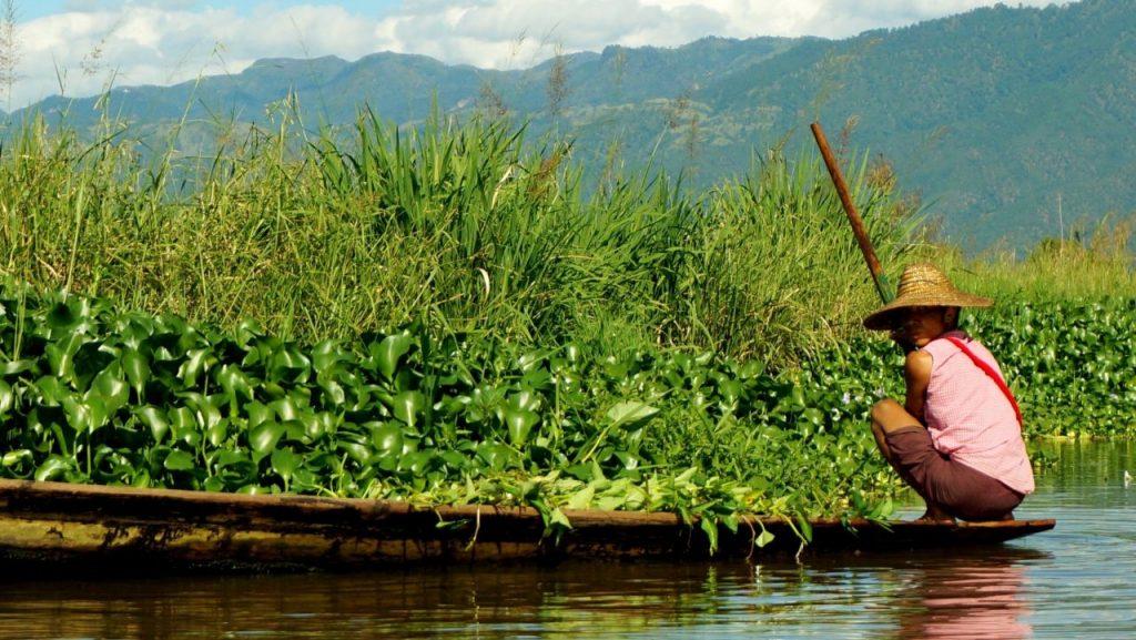 미얀마 인레 호수(Inle Lake) 수상 가든, Photo by Tabia Delongchamp