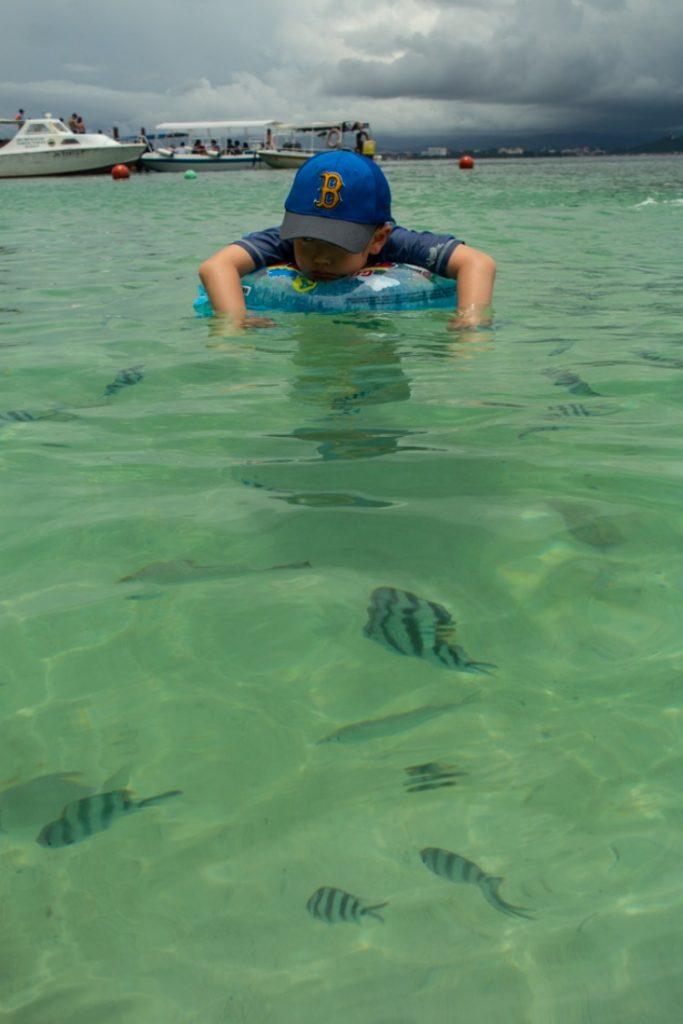 사피섬 호핑투어-04214074
