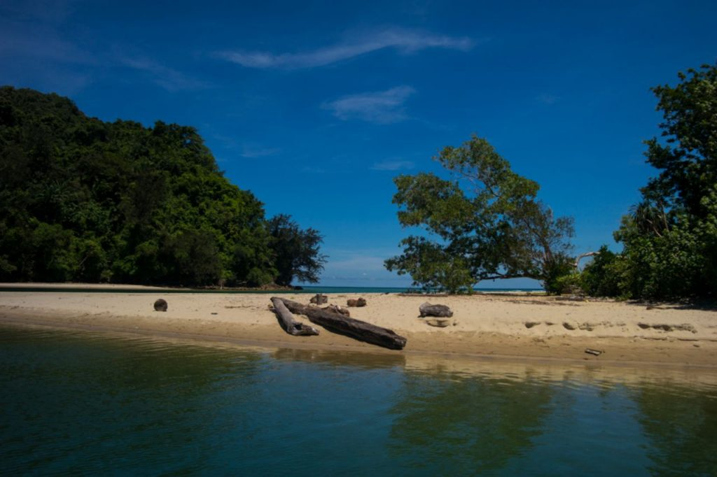 코타키나발루 맹그로브 투어 도착지, 켈리베이 용미만 강과 바다가 만나는 곳