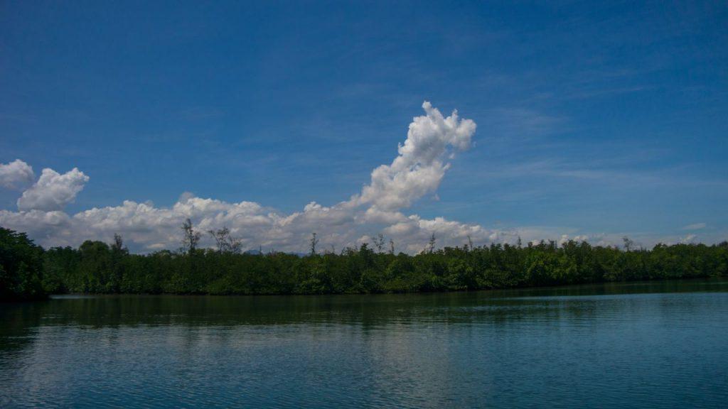 코타키나발루 맹그로브 투어 맹그로브 숲위의 멋진 구름