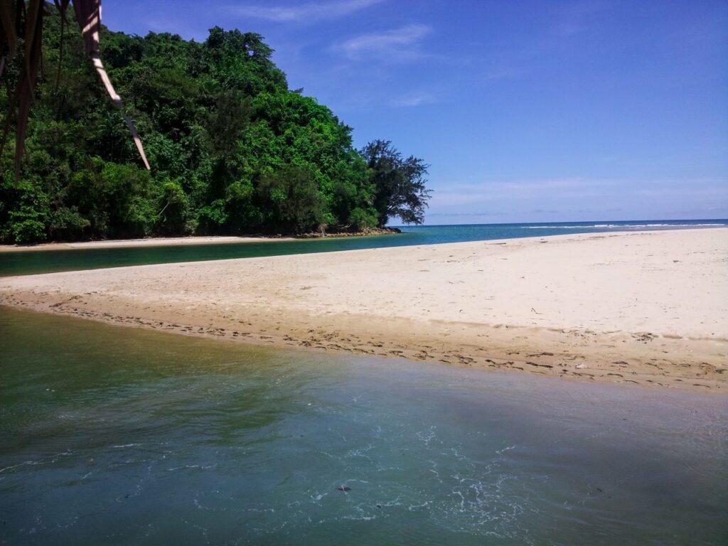 코타키나발루 맹그로브 투어 바다와 강이 만나는 곳