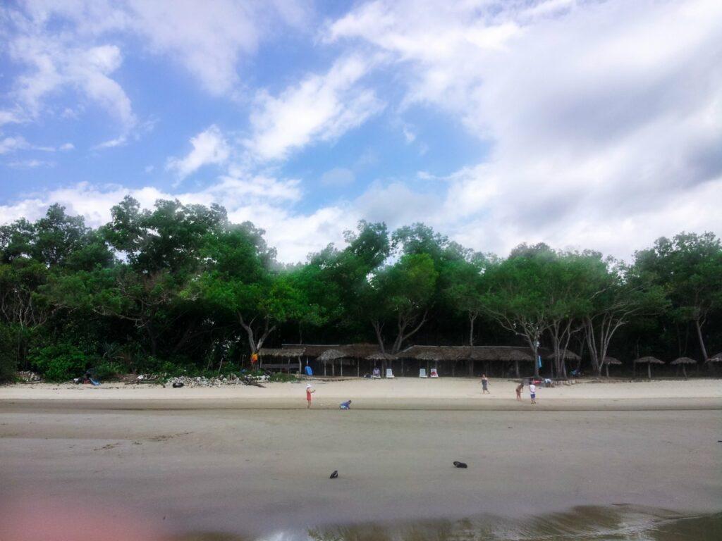 코타키나발루 맹그로브 투어 바닷가에서 바라본 맹그로브 숲 방향
