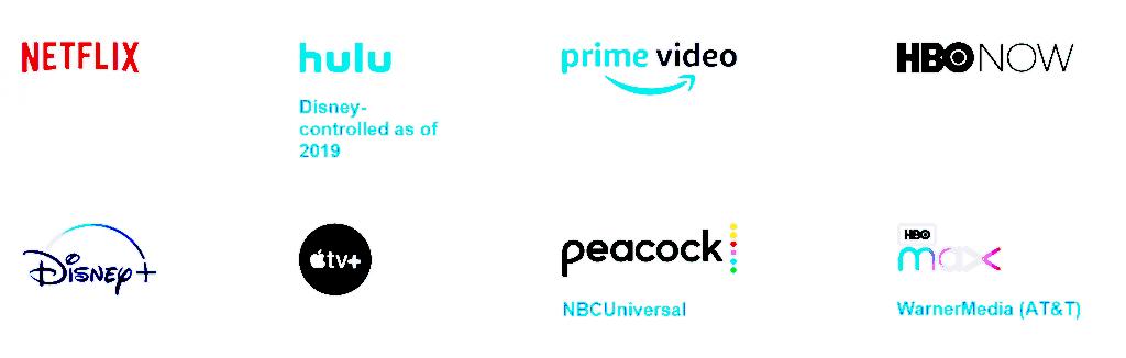 미국 미디오 스트리밍 시장 참여 기업들