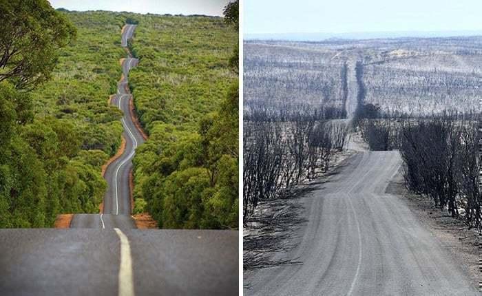 2019~2020 호주 산불 전후 사진, 멋진 풍광의 청정 Kangaroo Island가 변한 모습, Image from Boredpanda, ajcx89,Kayne Davis