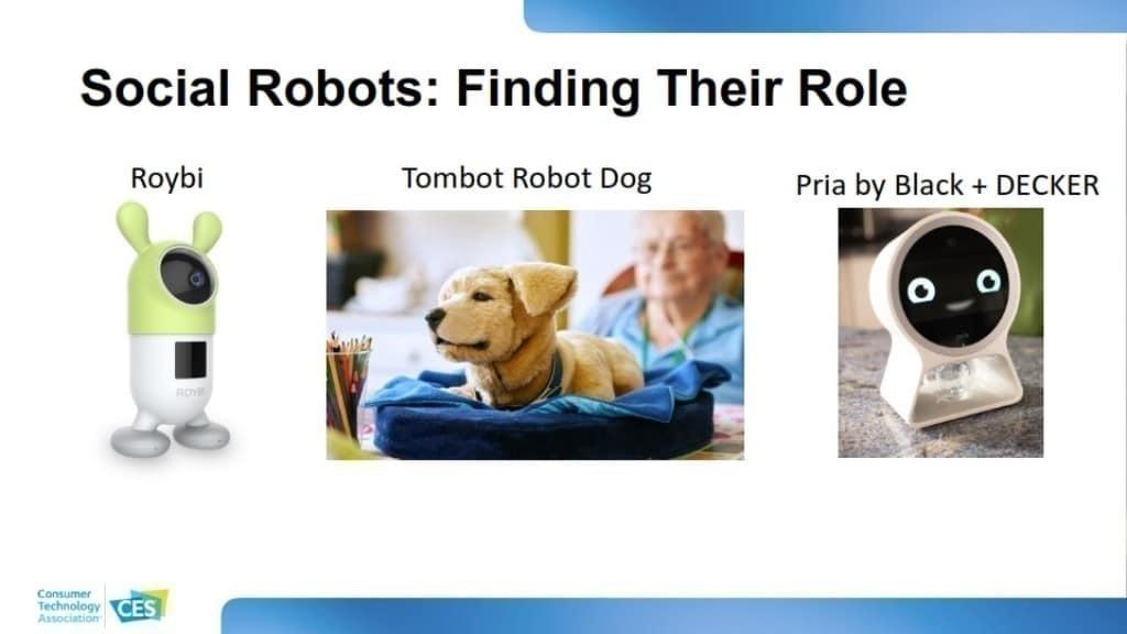 CES 2020 소비자 기술 트렌드, 소셜 로봇의 등장, Social Robots