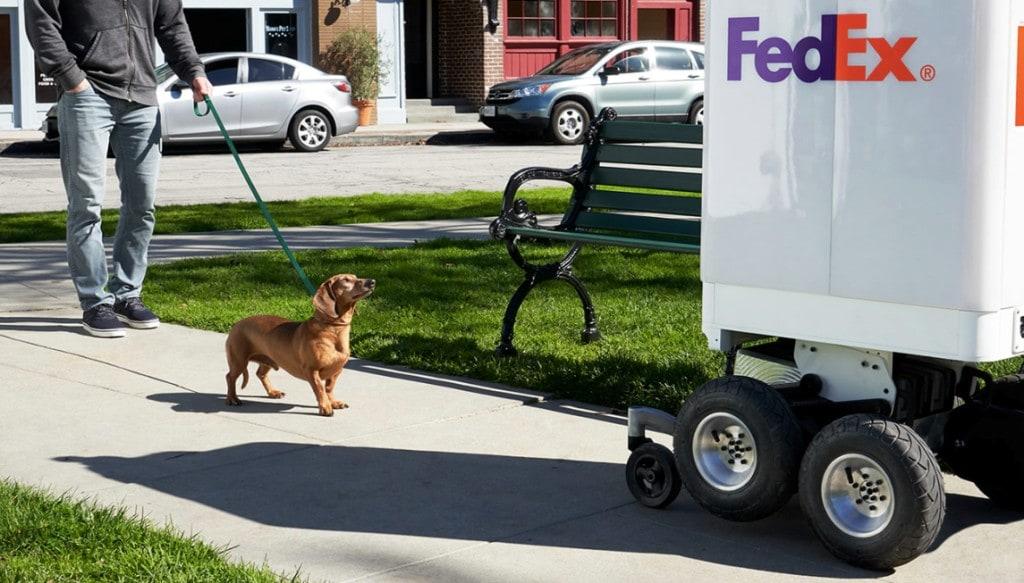 페덱스 록소(Roxo)가 배송하는 모습 그리고 어린이, Image from Fedex