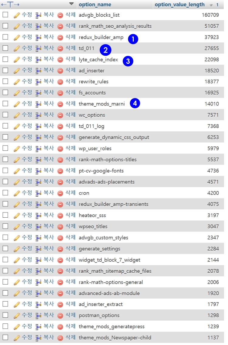워드프레스 데이타베이스 옵션 테이블에서 자동 실행되는 데이타 Top 30 리스트